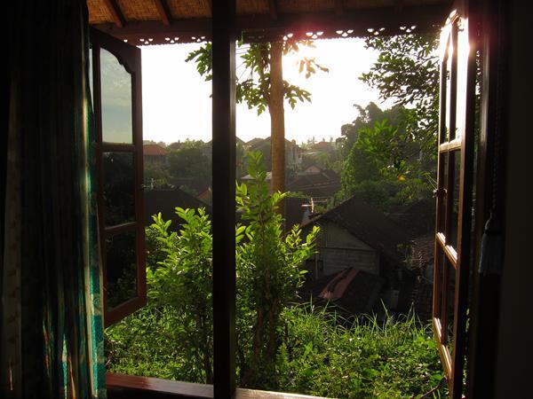 Výhled z okna pokoje v Ubudu