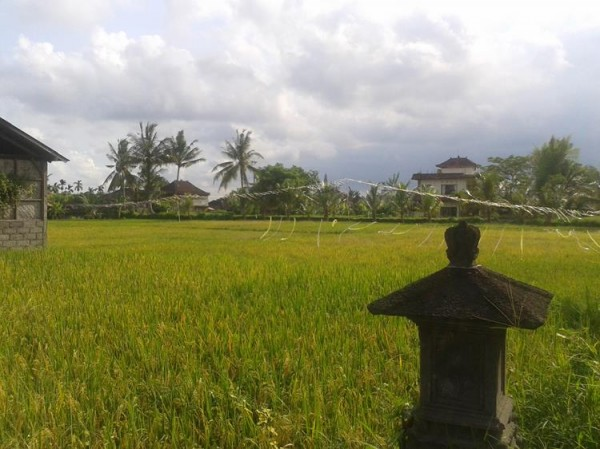 Tomáš Procházka - Bali digitální nomádství