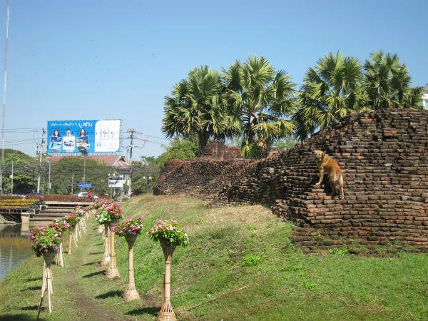 Zbytky hradeb historického centra Chiang Mai