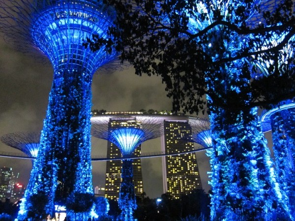Gardens by the Bay Marina Bay Sands