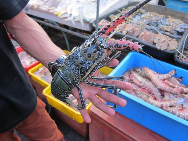 humr lobster Kota Kinabalu market
