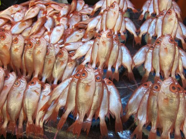 rybí trh fish market Kota Kinabalu