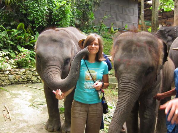mae sa elephant chiang mai adela sestakova